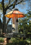 birdfeeders attracts birds