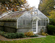 eCourse on Growing Greenhouse plants and flowers