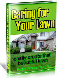 Care and Grooming of your lawn